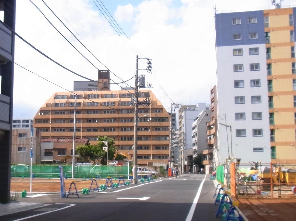 湊のライオンズマンション鉄砲洲'(南側から撮影)